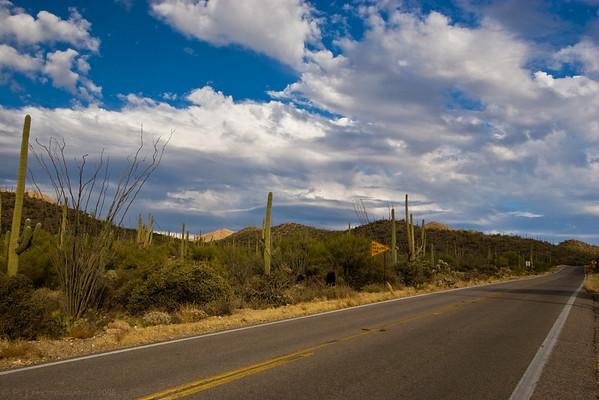 Sonoran Desert landscapes